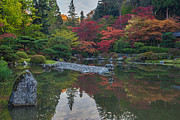 Japanese Garden Photos - Vibrant Tranquil Autumn Garden by Mike Reid