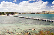 Tim Hester Prints - Victor Harbour South Australia Print by Tim Hester