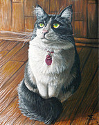 Cat Paintings - Victoria by Cara Bevan