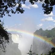 Victoria Falls Rainbow Print by Barbie Corbett-Newmin