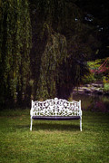 Bench Framed Prints - Victorian Bench Framed Print by Joana Kruse