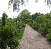 Melissa McCrann - Victorian Garden