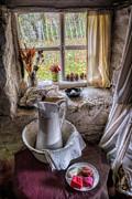 Victorian Wash Area Print by Adrian Evans