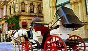 Horse And Buggy Painting Posters - Vieux Port Caleche Scene White Horse Red Wheels Trots Along Cobbled Stones Streets Carole Spandau  Poster by Carole Spandau