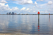 Tampa Skyline Photos - View from Ballast Point Park by Carol Groenen