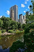 Pond In Park Prints - View From Central Park Print by Lanis Rossi