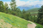 National Park Paintings - View from Deer Mountain by Daniel Dayley