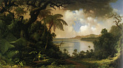 Tree Ferns Digital Art - View From Fern Tree Walk Jamaica by Martin Heade