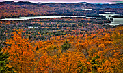 Fir Trees Framed Prints - View From McCauley Mountain Framed Print by David Patterson
