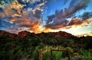 Sedona. Sunset Posters - View From the Fence  Poster by Saija  Lehtonen