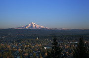 Charmian Vistaunet - View of Mt. Hood