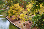 Park Scene Paintings - View of Norfolk Botanical Garden Canal 2 by Lanjee Chee