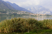Italian Landscapes Posters - View of on the lake Poster by Federico Cimino