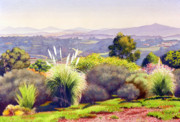 Pampas Grass Framed Prints - View of Rancho Santa Fe Framed Print by Mary Helmreich