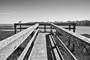 Wooden Platform Framed Prints - View of the Elkhorn Slough from a platform.  Framed Print by Jamie Pham