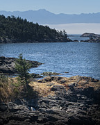 Randall Nyhof - View on Vancouver Island No. 0462