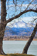 James BO  Insogna - View Through The Trees To Longs Peak