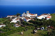 Village By The Sea Posters - Village in Azores islands Poster by Gaspar Avila