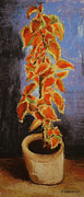 Old Masters Pastels Posters - Vincents Coleus in Pastels Poster by Marna Edwards Flavell