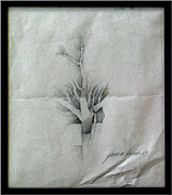 Parable Drawings Posters - Vine and Branches A 1969 Poster by Glenn Bautista