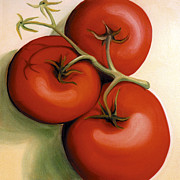 Tomatos Painting Metal Prints - Vine Ripe Metal Print by Laura Dozor