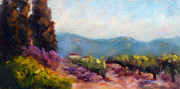 Napa Valley Vineyard Paintings - Vines by Carolyn Jarvis