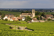 Des Photo Framed Prints - Vineyard and village of Pommard. Cote dOr. Route des grands crus. Burgundy. France. Europe Framed Print by Bernard Jaubert