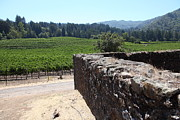 Wine Country Prints - Vineyard and Winery Ruins At Historic Jack London Ranch In Glen Ellen Sonoma California 5D24537 Print by Wingsdomain Art and Photography