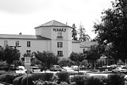 Hyatt Hotel Posters - Vineyard Creek Hyatt Hotel Santa Rosa California 5D25866 bw Poster by Wingsdomain Art and Photography