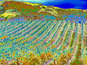 Vineyard Art Posters - Vineyard dream Poster by Raphael OLeary