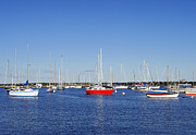 Vineyard Haven Prints - Vineyard Haven Harbor Print by John Greim