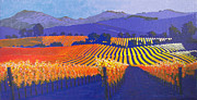 California Vineyard Paintings - Vineyard Horizons by Jon Adams