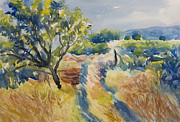 Grape Vineyard Originals - Vineyard impressions 3 by Jack Tzekov