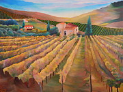 Grapevines Paintings - Vineyard In Autumn Colors - Original Acrylic Painting in Gallery Profile by Louisa Bryant