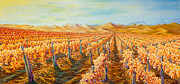 Red Wine Drawings Originals - Vineyard by Josh Long