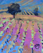 Calistoga Painting Posters - Vineyard Poster by Kip Decker