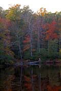 Carolyn Stagger Cokley - vineyard lake