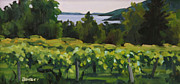 Finger Lakes Painting Framed Prints - Vineyard Morning Framed Print by Barbara Benedict Jones