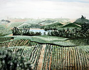 Vineyard On A Foggy Morning Print by Vickie Wright