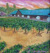 Vineyard Sunset Print by Scott Phillips