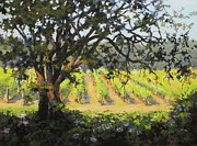 Grapevines Paintings - Vineyards Edge by Karen Ilari