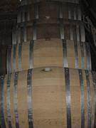 Vineyards In Va - 121218 Print by DC Photographer