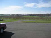 Vineyards In Va - 121230 Print by DC Photographer