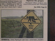 Vineyard Posters - Vineyards in VA - 121238 Poster by DC Photographer