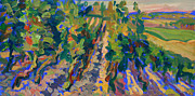 South Of France Painting Originals - Vineyards of Cierac by Katia Weyher