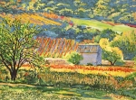 Stone House Framed Prints - Vineyards of Provence Framed Print by  David Lloyd Glover