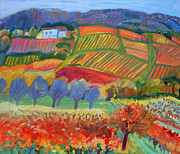 Autumn Vineyards Paintings - Vineyards. South of France by Katia Weyher