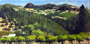 Calistoga Framed Prints - Vineyards Under the Palisades Framed Print by Char Wood