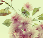 Pink Floral Art Photos - Vintage 2 by Kristin Kreet