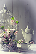 Bird Cage Framed Prints - Vintage Afternoon Tea Framed Print by Christopher and Amanda Elwell